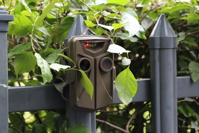 Vidéosurveillance jardin