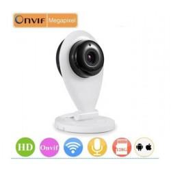 Mini Camera IP WiFi HD avec Vision de Nuit